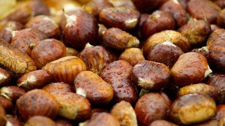 chestnuts-994138_960_720.jpg