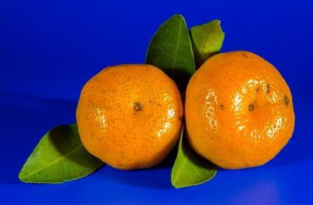 orange-213548_960_720