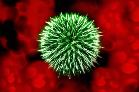 bacteria-1744857_960_720
