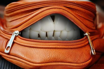 handbag-1558855_960_720.jpg