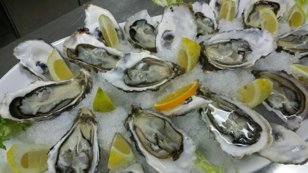 oysters-608905_960_720.jpg
