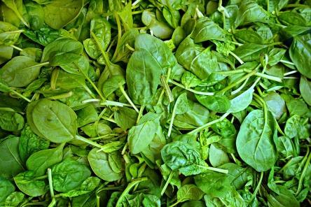 spinach-1522283_960_720.jpg