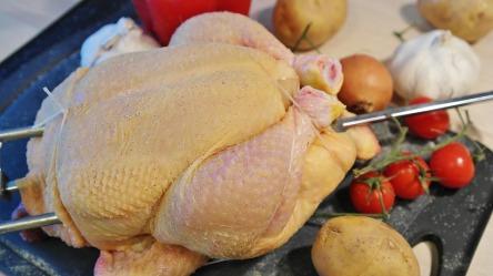 chicken-1884873_960_720