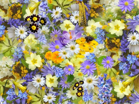 spring-flowers-110671_960_720.jpg