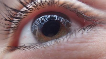 eye-321961_960_720.jpg