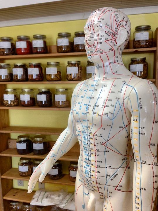 acupuncture-2308489_960_720.jpg