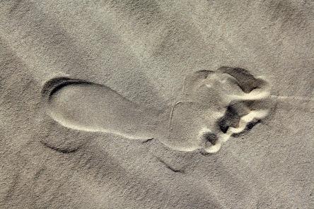footprint-2431025_960_720.jpg