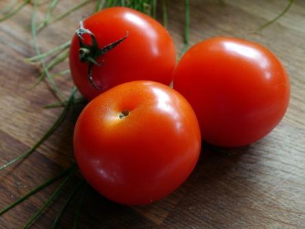 tomato-498721_1280.jpg
