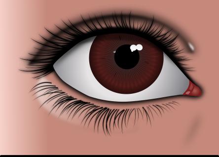 eye-157815_1280.png