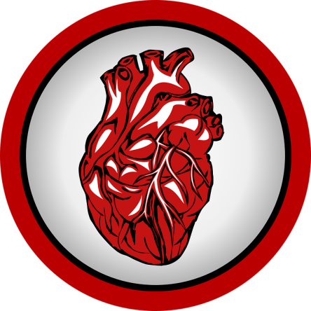 heart-738385_960_720.png