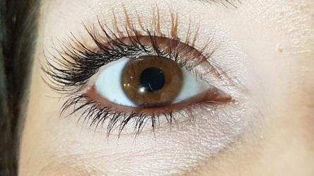 eye-2576890_960_720.jpg