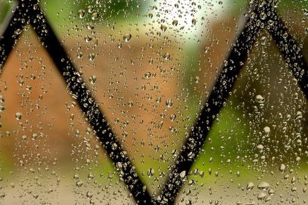 rain-2927045_960_720.jpg