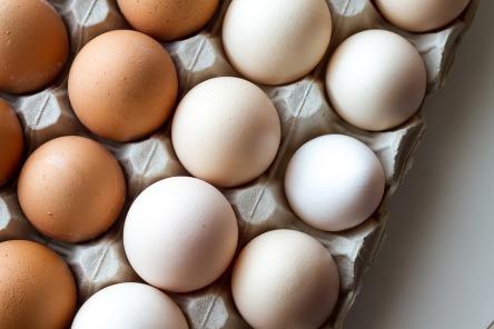 egg-white-3048118_960_720.jpg