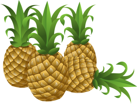 pineapples-576576_960_720.png
