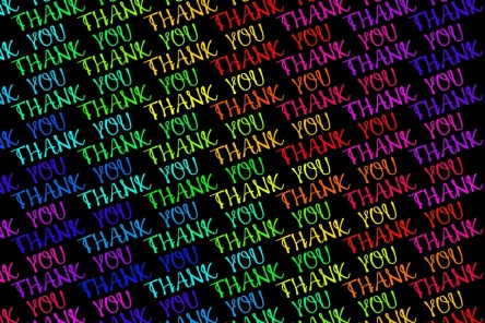 thank-you-2744231_960_720.jpg