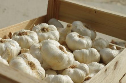 garlic-3164849_960_720.jpg