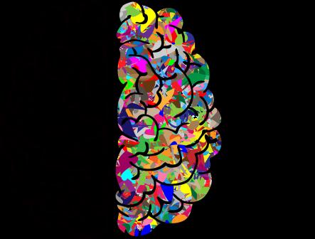brain-2750415_960_720.png