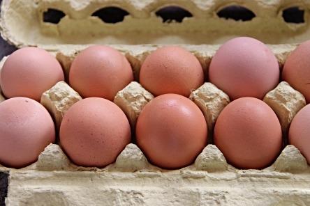 egg-3193714_960_720