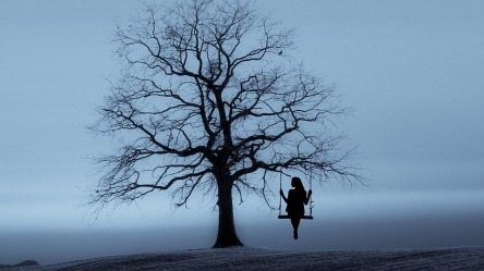 tree-3080406_960_720.jpg