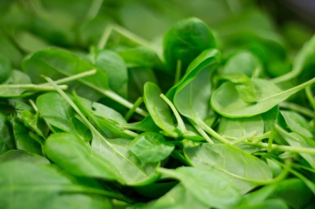 spinach-2216967_1280.jpg
