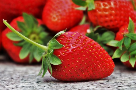 strawberries-3359755_960_720.jpg