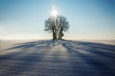 winter-1965902_960_720.jpg