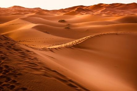 desert-1270345_1280.jpg