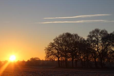 sunrise-1886345_1280.jpg
