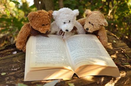 teddy-bear-2855982_960_720.jpg