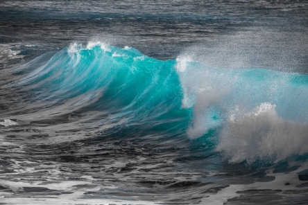 wave-3361029_960_720.jpg