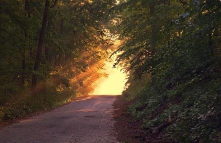 sunlight-166733_960_720